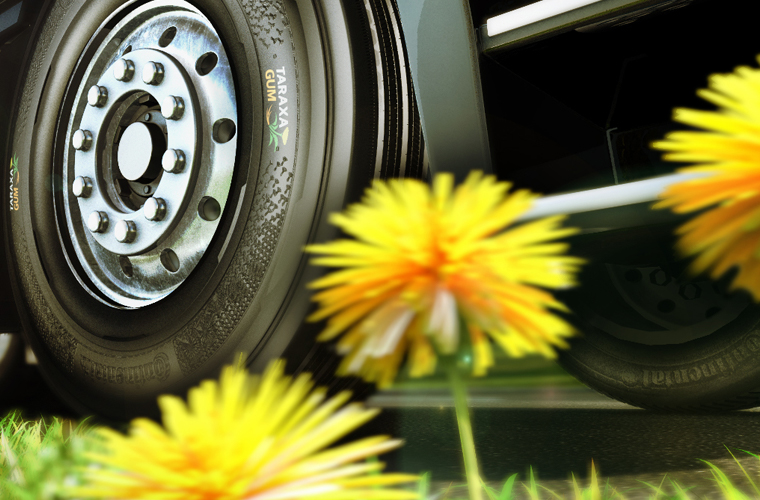 The future of sustainable tyres is the dandelion